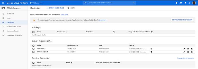 google-identity-provider-app-reg-screen-5